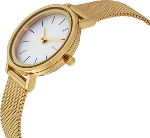 Часы SKAGEN SKW2443