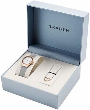 Часы SKAGEN SKW1101